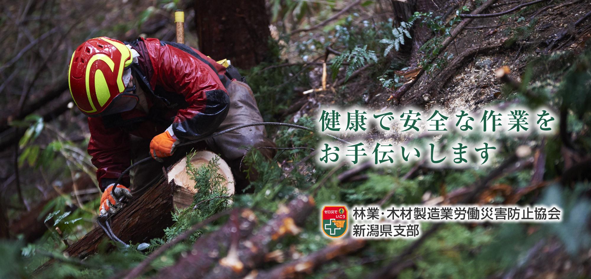 健康で安全な作業をお手伝いします 林業・木材製造業労働災害防止協会新潟県支部
